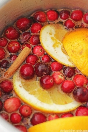 Naranjas Arándanos y especias en olla de cocción lenta